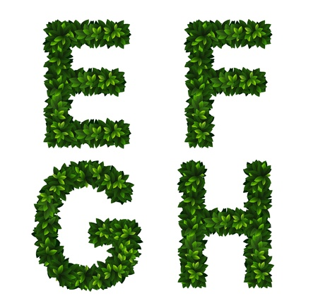 Bright natural alphabet from green leaves. Set. Letters e, f, g, h Vector