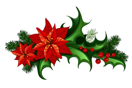 Christmas traditional decor with leaves and berries of holly and euphorbia Vector