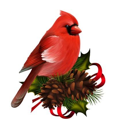 P�jaro cardinal rojo en la decoraci�n de navidad Foto de archivo
