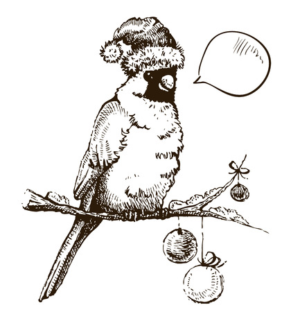 new year's cap: Red cardinal bird in Christmas cap  Hand-drawing