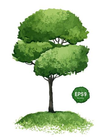 Simple arbre vert isolé sur fond blanc Vector illustration Banque d'images - 25234963