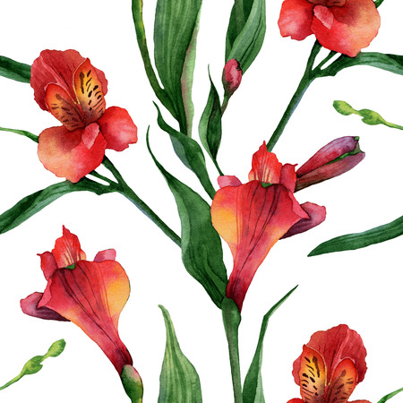 Floral pattern  Watercolor seamless background  Red alstroemeria