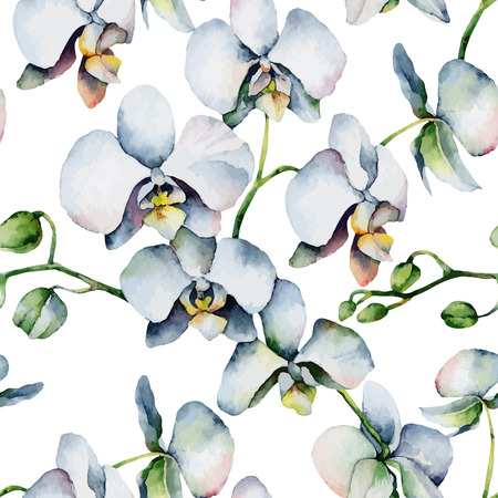 Seamless background with white orchids. Vector illustration
