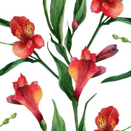 Floral pattern. Vector seamless background. Red alstroemeria Illustration