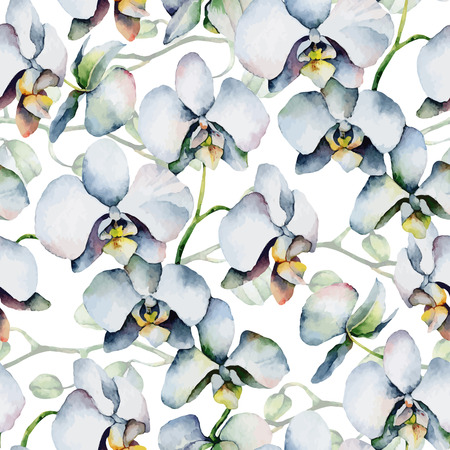 white orchid: Seamless background with white orchids. Vector illustration