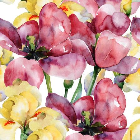 Motif floral. Aquarelle de fond sans soudure. Tulipes pourpres et iris jaunes Banque d'images - 29869807