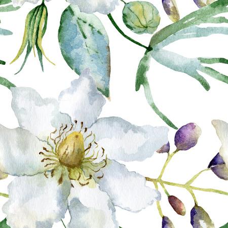graficas de pastel: Modelo floral. Acuarela de fondo sin fisuras. Clematis blancas y altramuces