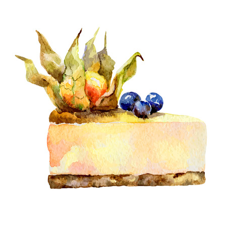 blueberry cheesecake: Single slice of cheesecake isolated on white background decorated with cape gooseberry. Vector illustration