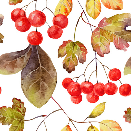 Bright autumn seamless pattern with gold leaves and berries of viburnum. Vector illustration Vector