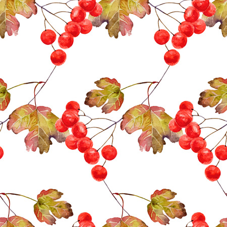 guelder: Bright autumn seamless pattern with gold leaves and berries of viburnum. Vector illustration