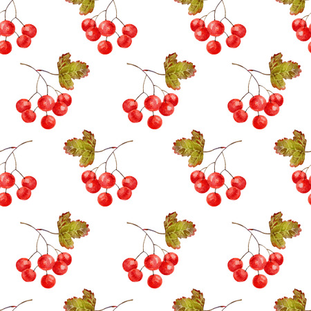guelder rose: Bright autumn seamless pattern with gold leaves and berries of viburnum. Vector illustration