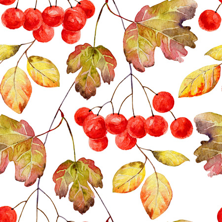 guelder rose: Autumn seamless pattern