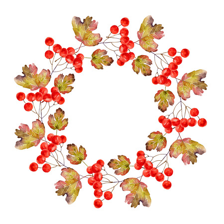 guelder rose: Wreath of viburnum