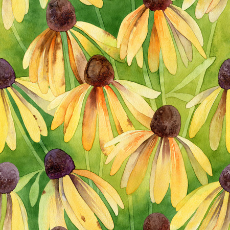 buttercup: Floral pattern. Watercolor seamless background. Yellow rudbeckia