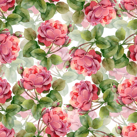 watercolor texture: Seamless floral pattern with bright pink roses. Watercolor illustration