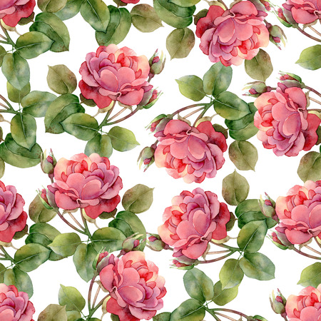botanical garden: Seamless floral pattern with bright pink roses. Watercolor illustration
