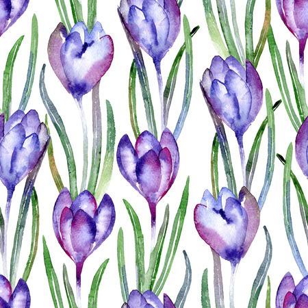 iridaceae: Seamless pattern with violet crocuses. Watercolor illustration