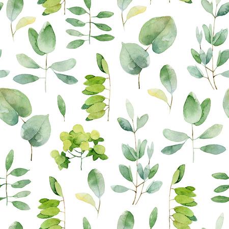 Modello a base di erbe senza soluzione di continuità con le foglie. illustrazione dell'acquerello Archivio Fotografico - 57501400
