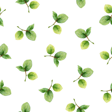 bilberry: Seamless pattern with leaves of bilberry. Watercolor illustration