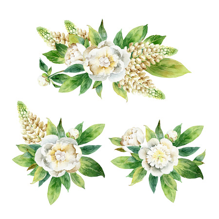 lupine: Set boutonnieres with peony and lupine isolated on white background. Watercolor illustration Stock Photo
