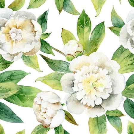 Seamless avec pivoines blanches et feuilles vertes. illustration d'aquarelle Banque d'images - 64200985