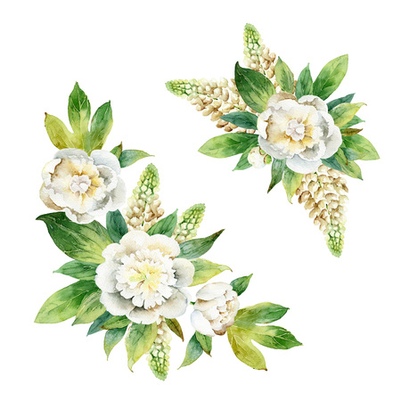 Set compositions with peony and lupine isolated on white background. Watercolor illustration Zdjęcie Seryjne
