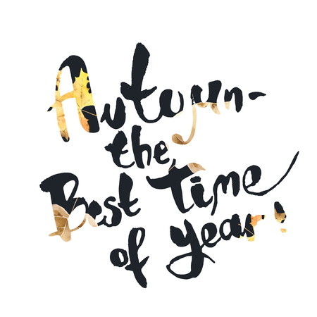 time of the year: Autumn is the best time of year. Seasonal inspirational phrase. Suitable for use on T-shirts, postcards, posters. Vector illustration Illustration