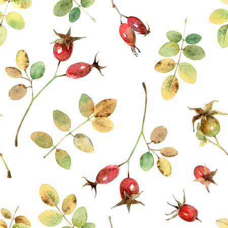 eglantine: Bright Autumn seamless pattern with leaves and berries rosehip. Watercolor illustration Stock Photo