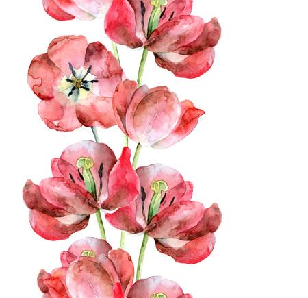 Seamless border of tulips
