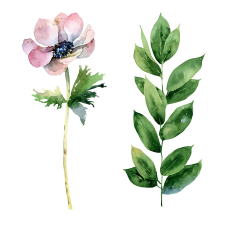 Set with anemone flower and green branch