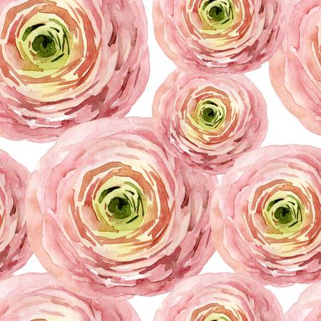 Seamless pattern with pink ranunculus Standard-Bild - 104854267