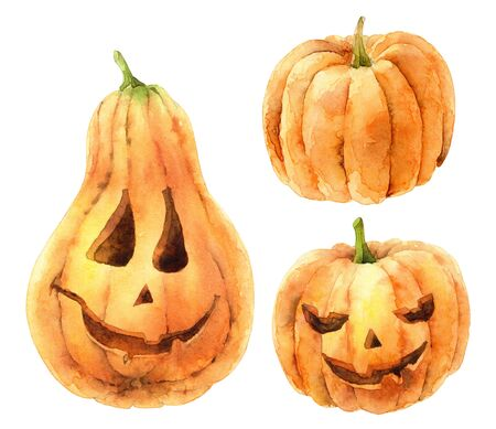 Set of bright orange pumpkins isolated on white background. Symbol of holiday Halloween Banque d'images