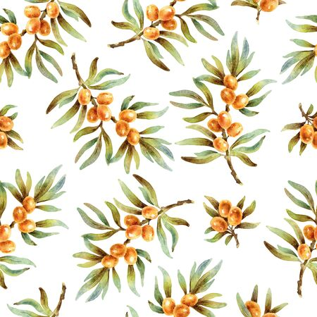 Watercolor seamless pattern with sea buckthorn berries