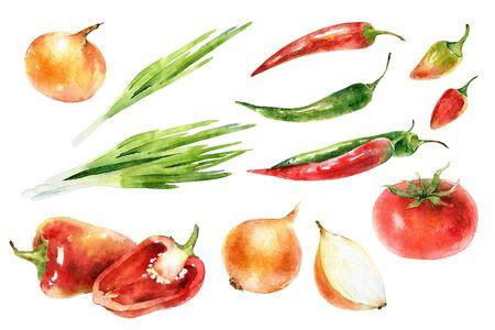 Watercolor set of fresh vegetables
