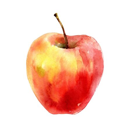 Beautiful ripe red yellow apple isolated on white background. Watercolor illustration
