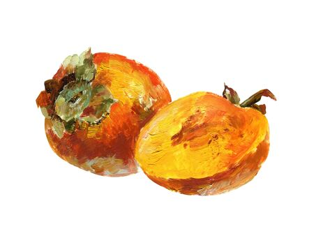Persimmon on white background. Oil painting