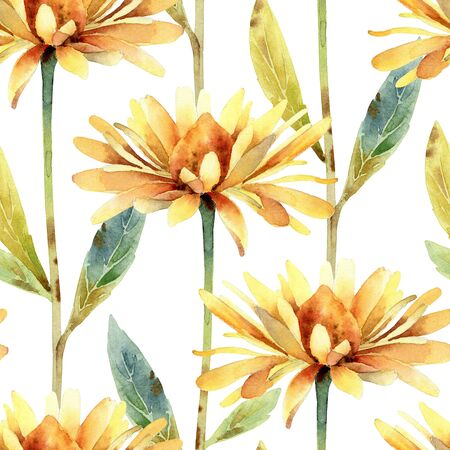 Watercolor seamless pattern with rudbeckia flower