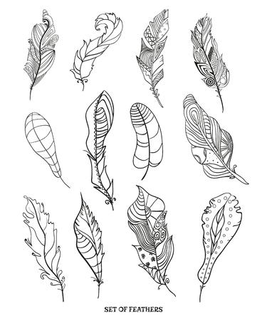 Plumas. Diseño Zentangle. Plumas Dibujadas A Mano Con Patrones ...