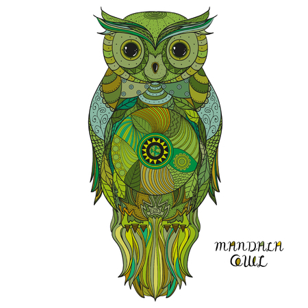 Owl Design. Hand drawn owl with abstract patterns on isolation. Design for spiritual relaxation for adults. Zen art. Ecological colours