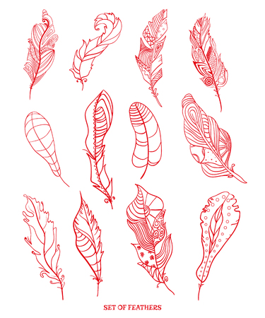 Feathers. Design Zentangle. Hand drawn feathers with abstract patterns on isolation background.