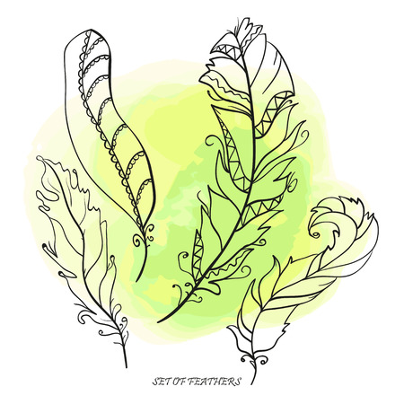Feathers. Hand drawn feathers. Watercolor spot. Isolation background. Design for spiritual relaxation for adults.  . Print for polygraphy, posters and textiles. Zen art. Decorative style