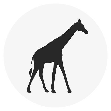 modern business: Giraffe abstract web icon Illustration