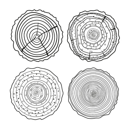 Tree rings. Mandala. Objects for design. Set of tree rings on isolation background. Conceptual graphics. Line art.  Decorative style. Outline for polygraphy, printing, posters and other