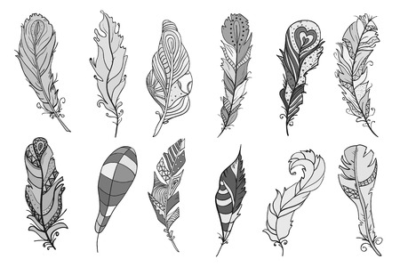 Feathers on isolated white. Design Zentangle. Hand drawn feathers with abstract patterns on isolation background. Design for spiritual relaxation for adults. Line art. Black and white illustration