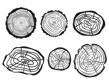 Tree rings on white. Wood cross section. Black and white illustration for your design