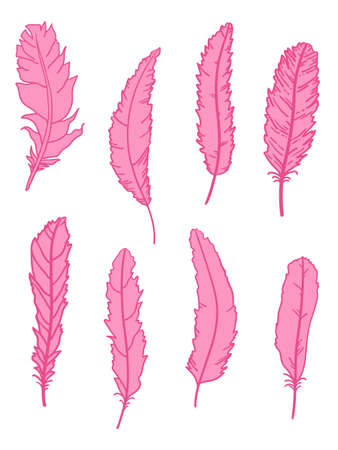 Feather. Hand drawn feathers on isolated white background. Print for textiles, fabrics, polygraphy, posters Illusztráció