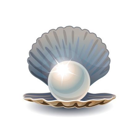 perlas: Perla brillante en concha abierta. RGB EPS 10 ilustración vectorial Vectores