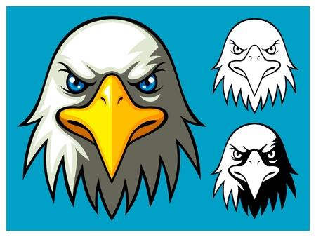 bald cartoon: Bald Eagle Head Illustration