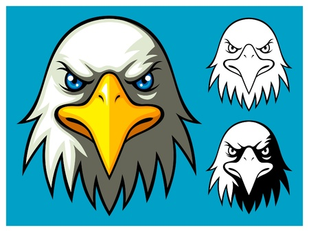 bald eagle: �guila calva cabeza Vectores