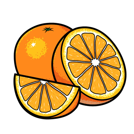 Sliced oranges cartoon